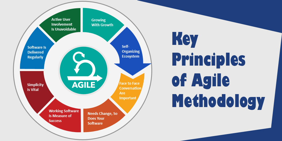 Moving Company Reviews >> 7 Ways To Develop An Agile Organisation – DAVID SUMMERTON ...